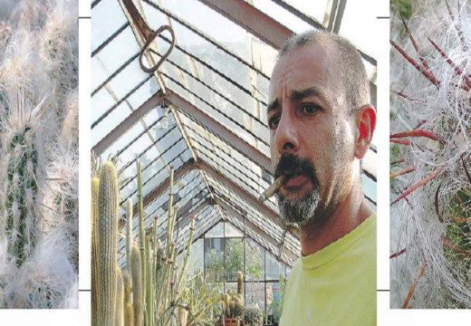 L'uomo cactus che sta costruendo la sua Arca di Noé